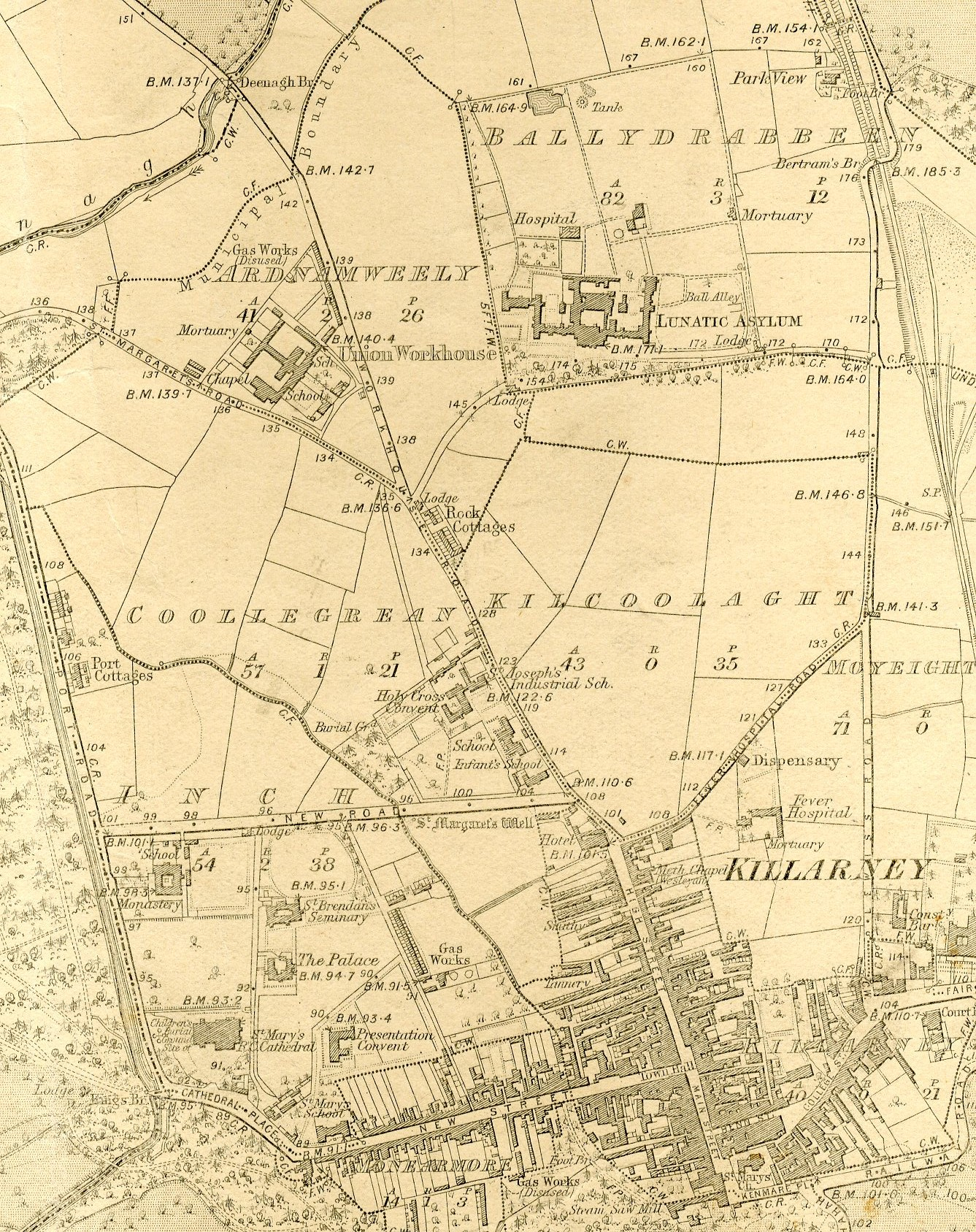 St Finan's 1894 OS 6 Inch Map
